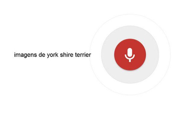 pesquisa-voz-desktop-google-03