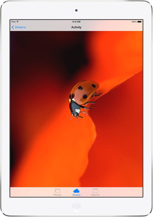 iPad-air-2013-03