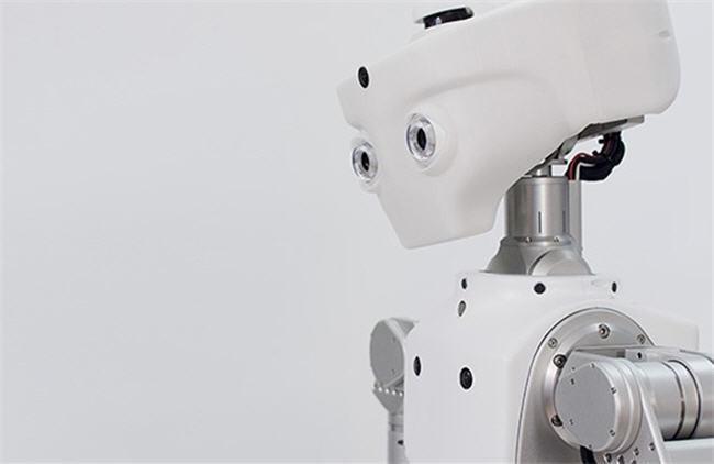650_1000_google-robots