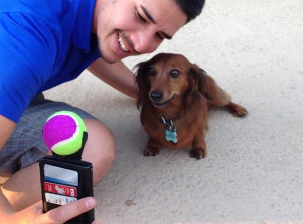 selfie-para-perros-3