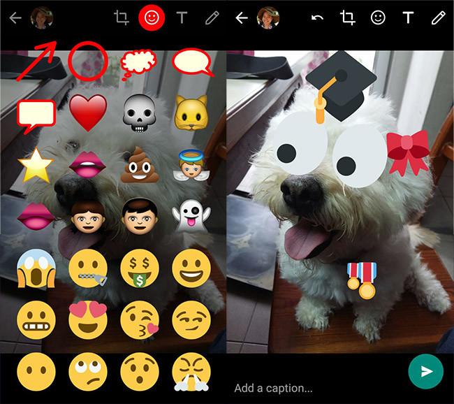 whatsapp-stickers-02